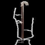 Walking Stick PNG Pic icon png