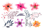Watercolor Flowers PNG HD Photo icon png