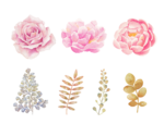 Watercolor Flowers PNG Transparent Background icon png