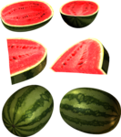 Watermelon PNG Clipart Background icon png