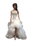 Wedding Dress PNG Photos icon png