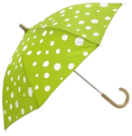 White Dotted Green Umbrella PNG icon png