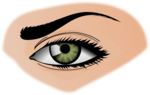 Woman Eyes Transparent Background icon png