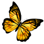 Yellow Butterfly PNG icon png